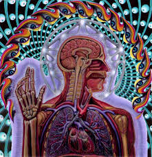 The illuminated Manuscript of the Body: Alex Grey's Net of Being (4/5)