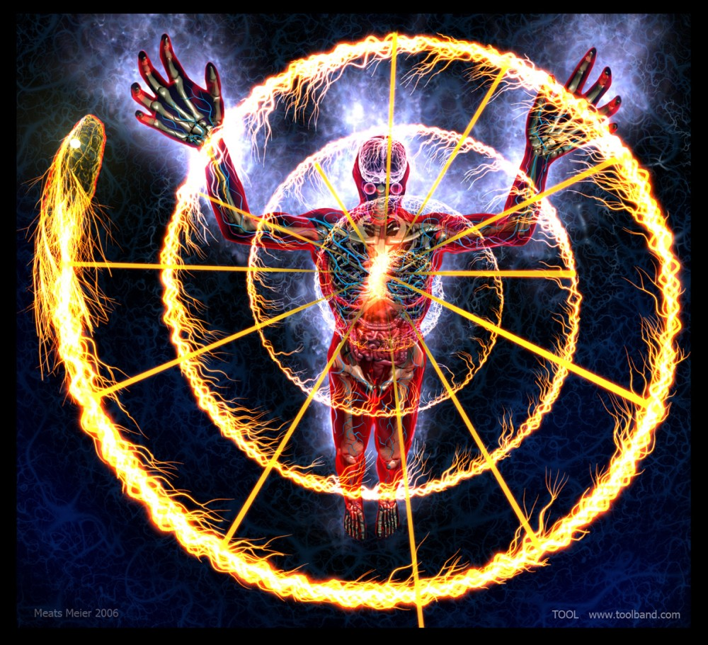 The illuminated Manuscript of the Body: Alex Grey's Net of Being (1/5)